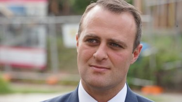 77.1 per cent of Tim Wilson's electorate of Goldstein wanted same-sex marriage legislated this year.