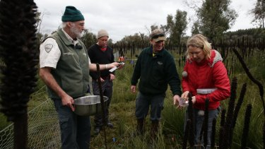 Dr Noushka Reiter and volunteers reintroducing orchids to the Lower Glenelg National Park in western Victoria.