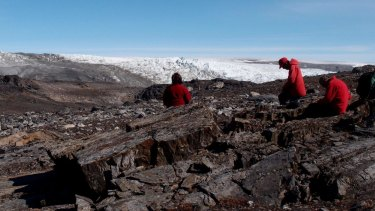 The Isua site in Greenland where Professor Allen Nutman and his colleagues have found the world's oldest fossils: stromatolites dating back 3.7 billion years.