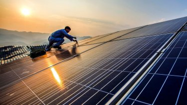 The government needs to take a leading role in solar, an advocate says, as the storms in South Australia put the issue on the agenda.