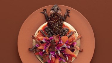 Sweet and sour cane toad legs by David McMahon.