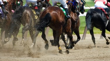 The trainer defrauded a client of $25,677 by claiming training and other expenses of a non-existent horse over five years.