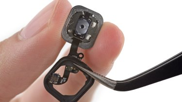 Error 53 epicentre: A magnified view of the home button and home button cable on an iPhone 6.