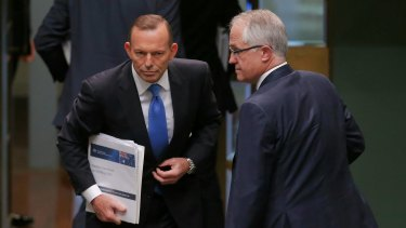 Tony Abbott would have lost his Sydney seat had Malcolm Turnbull not intervened.