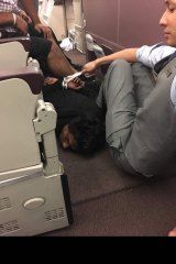 A picture tweeted by one of the passengers appears to show the man face-down on the floor after being handcuffed.
