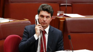 Scott Ludlam resigned from the Senate in July.