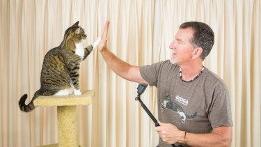 Local YouTube sensation Didga, the skateboarding cat, with owner and trainer Robert Dollwet.