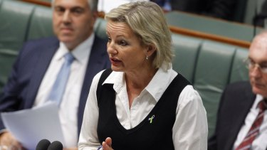 Second woman in cabinet: Sussan Ley.