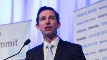 Simon Birmingham's plan to introduce numeracy and literacy testing for year 1 students has been criticised.