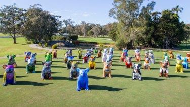 Bearings: Explore Port Macquarie along the Hello Koalas Sculpture Trail.