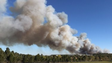 Large plumes of smoke were sent high into the Sunshine Coast sky on Friday afternoon, as the bushfire raged out of control.