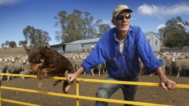 One man and his dog: Jock MacRae and Dinah set their sights on a new future.