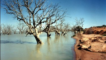 Menindee Lakes, about 100 kilometres from Broken Hill.