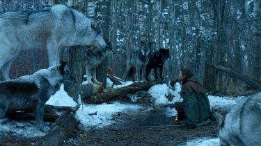 Arya Stark reunites with her beloved direwolf Nymeria.