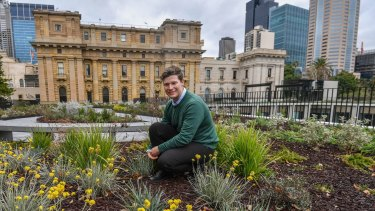 Lucas Dean, senior landscape architect with Taylor Cullity Lethlean, in the new Parliament House garden.