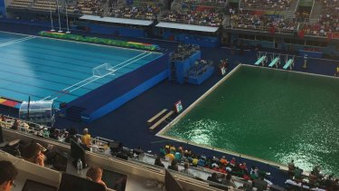 The diving pool has turned green.