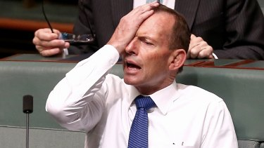 Tony Abbott sitting on the backbench in November.