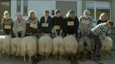 The two brothers at the centre of the film are among those who enter an annual competition to find the best ram.
