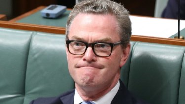 Christopher Pyne has been labelled a 'menace' by a Coalition backbencher for coveting Marise Payne's job.