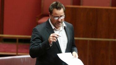 Greens senator Peter Whish-Wilson.