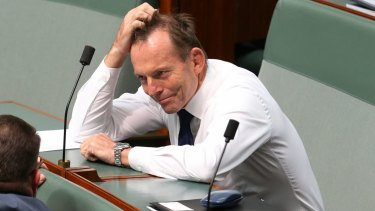 Tony Abbott has asked just one question in the current Parliament.