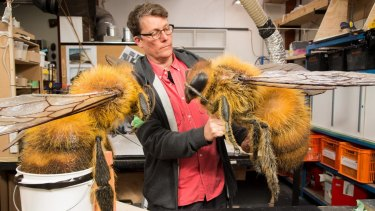 Richard Taylor with two foam bees under construction at Wellington's Weta Workshop.