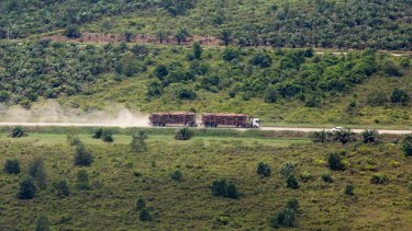 An aerial view of a truck carrying tree logs in APRIL's concession Riau province.