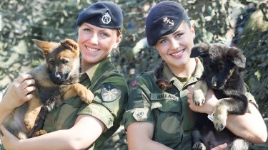 Two members of the Norwegian Armed Forces with puppies.