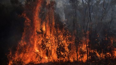 """AS the """"watch and act"""" warning was cancelled, 17 crews remained to fight the blaze."""