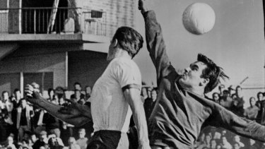 Sydney-Prague goal keeper Gary King, playing in the State Ampol Cup Final against South Melbourne Hellas in 1969. Soccer in the 1960s and '70s was dominated by ethnic clubs, which  reflected multiculturalism in a nation that was still mainly white, Anglo-Australian and xenophobic.