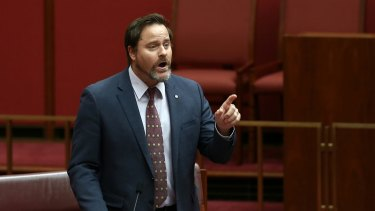 Greens senator Peter Whish-Wilson.