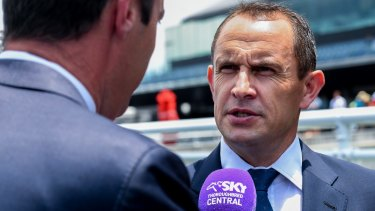 Honour: Chris Waller will be inducted into the New Zealand Racing Hall of Fame next month.