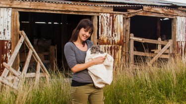 Sydney University researcher Dr Valentina Mella is leading a world-first study into giving koalas drinking water.