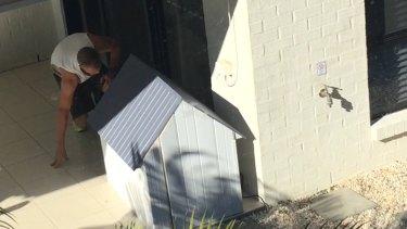 Brisbane chef Craig Muller was filmed abusing a puppy.