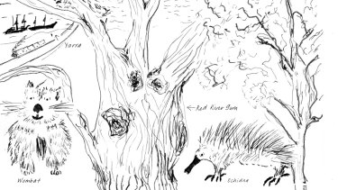 Drawing by Sophie Cunningham from her book City of Trees.