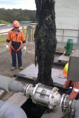 A blockage of wet wipes being removed from Sydney Water's Rouse Hill Treatment Plant.
