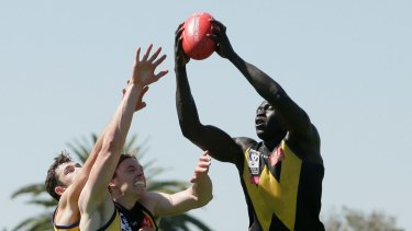 North Melbourne's Majak Daw in action for Werribee.