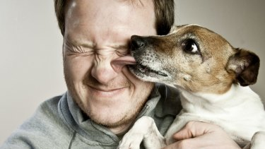 In theory, dogs love their humans more than cats.