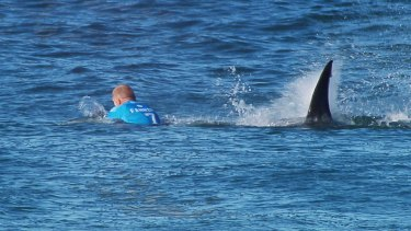 Mick Fanning's unforgettable encounter in South Africa.