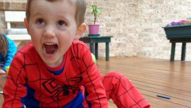 William Tyrell vanished from the front yard of his grandparent's house in Kendall and was last seen wearing a Spider-Man suit.