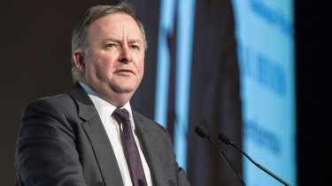 Federal opposition infrastructure spokesman Anthony Albanese condemned Mirvac's proposal on Thursday night.