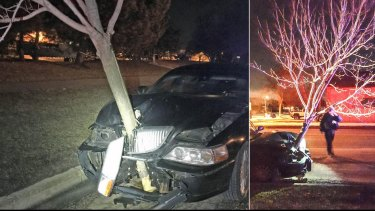 Police in Roselle, Illinois, recently stopped a car with a tree wedged in its grille. The driver was cited for driving under the influence.
