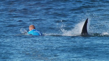 Terrifying: Mick Fanning's unforgettable encounter last year.