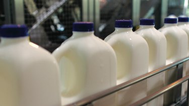 Contract lost: A dairy company pulled its halal certification after complaints.