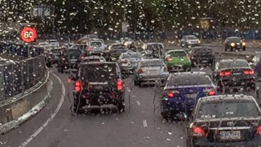 When motorists fail to pay their tolls, CityLink operator Transurban hands the matter over to the Justice Department.