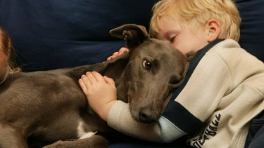 Dogs and children can be the best of friends, but they should be supervised when together, experts say.