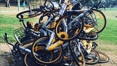 Ride sharing bikes dumped at Waverley Oval, Bondi Road last Friday.