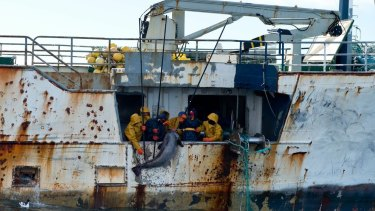 Pirate fishers haul a big toothfish aboard the vessel Kunlun from Antarctica's Ross Sea.