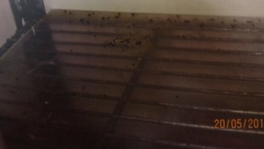 Mouse droppings in dry storage shelving at Red Emperor, as pictured in photographs shown to the court.