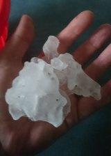 Hail from Murwillumbah. Courtesy of Deborah Larrescy and Higgins Storm Chasing.